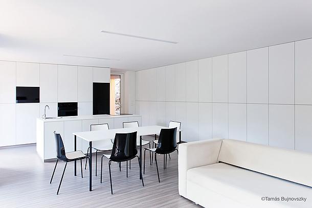 casa-hireg-attilia-beres-architects (13)