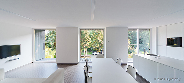 casa-hireg-attilia-beres-architects (15)