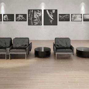 Nueva serie de pavimentos y revestimientos porcelánicos de Zirconio