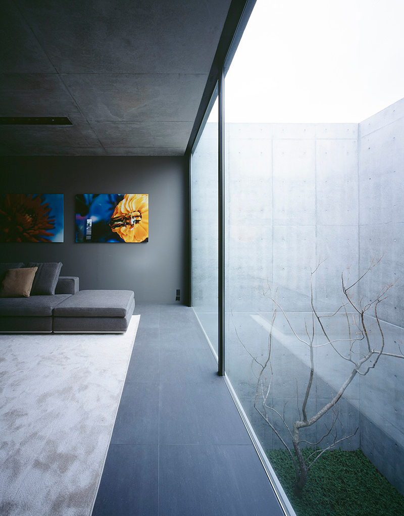 grigio house apollo architects (3)