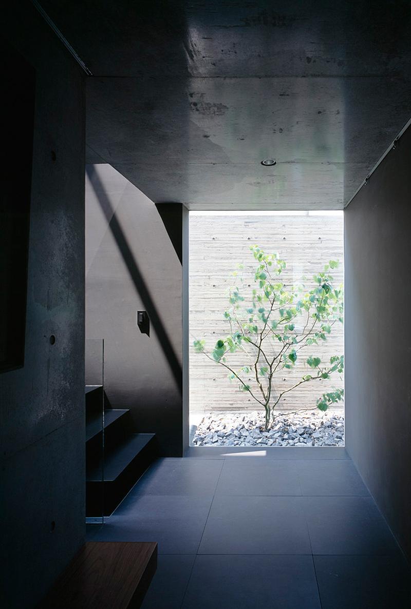 grigio house apollo architects (9)
